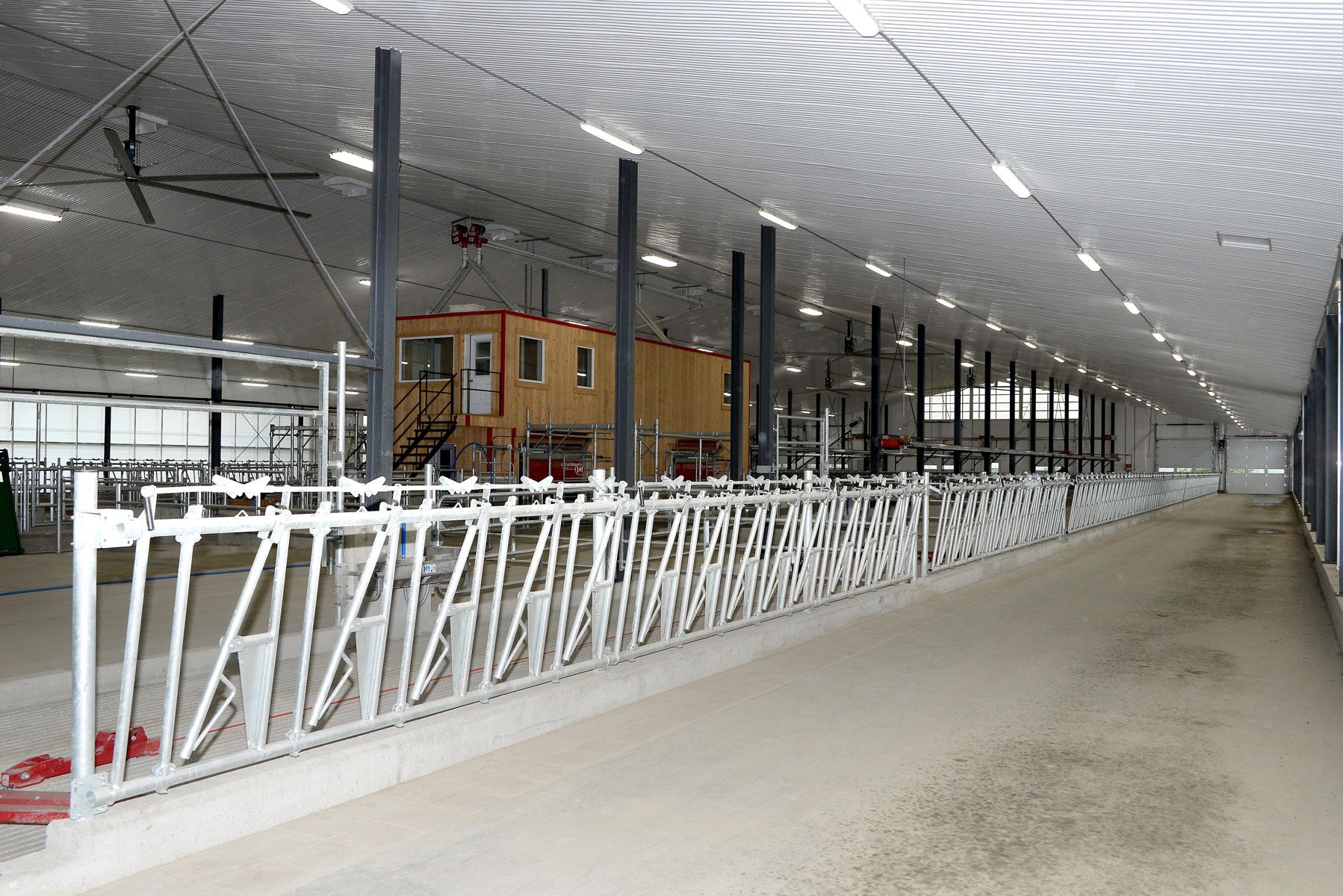 mangeoire carcan étable laitière installation agricole / Équipements PFB