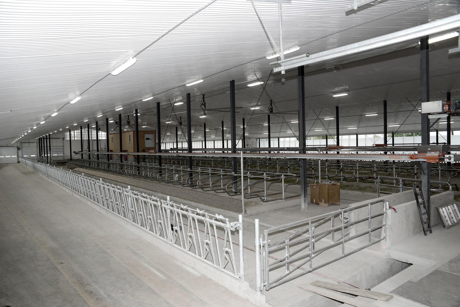 installation vache laitière mangeoire carcan et logette / Équipements PFB