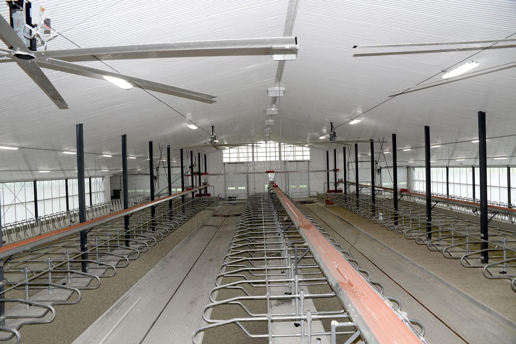 logette installation vache laitière / Équipements PFB